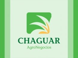 Chaguar – Agronegocios – Branding