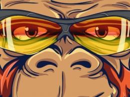 Smoking Monkeys on Bikes – Ilustración / Branding ®