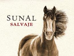 Sunal – Agustín Lanús Wines – Vino Salteño